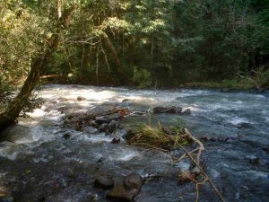 rios en misiones22
