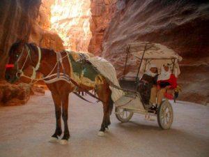 ziara y brinda en carrito en petra