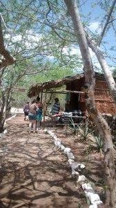 Entrada al cenote YAXBACALTUN en Homun, Merida, Yucatan.